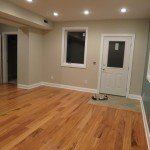 Walk out basement office room addition